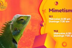 2.Mimetismo_Postal_2019