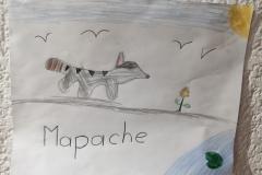 Mildred, 7 años, Ciudad de México