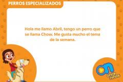 marco_perros1