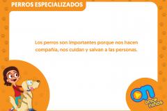 marco_perros10