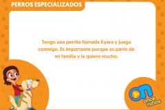 marco_perros14